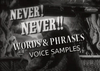 Words phrases voicesamples